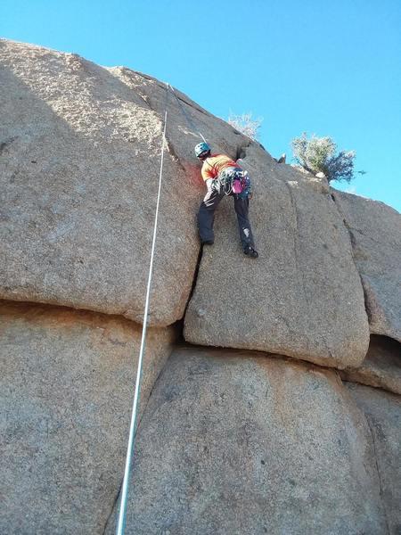 Upper Wall above Live Oak and Palo Verde - short hand cracks