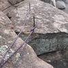 steel rods pounded into the rock.