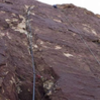 Leading crux pitch of a route put up by good friend in honor of brother.