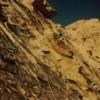 Early 90's on Coltrane. Oak Creek Canyon. Red Rock