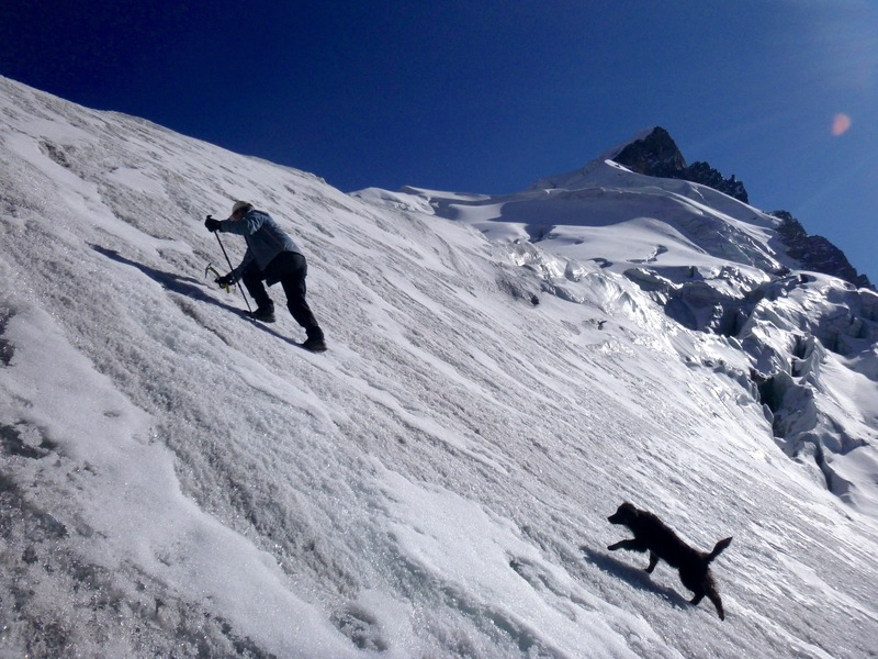 A classic Peruvian experience: local alpaca-herder Luis Crispin and a stray puppy ascend the lower ice slopes on the south face of Parcocaya. After this trip, Luis took the puppy in to his home, and they live together to this day.