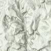 LIDAR DEM of Jackson Falls, IL