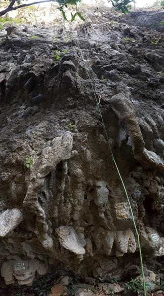 Straight up the center of the photo with a great crux.