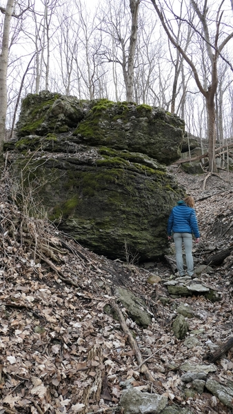 This is the one really good size boulder I found, this side plus the side to the right area about 12 ft high or so.