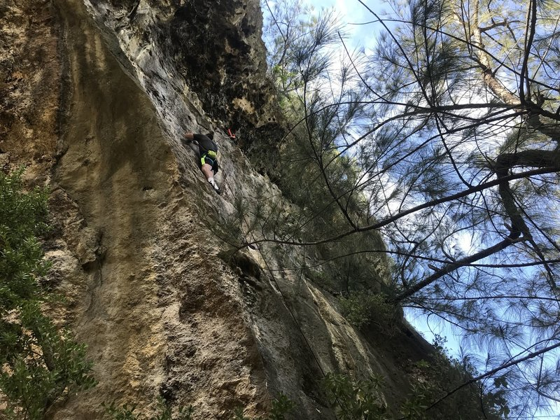 Climbing the Unknown 5.8