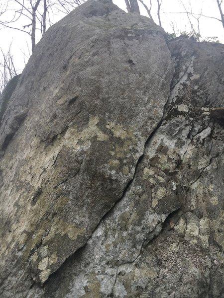 Grey granitic gneiss