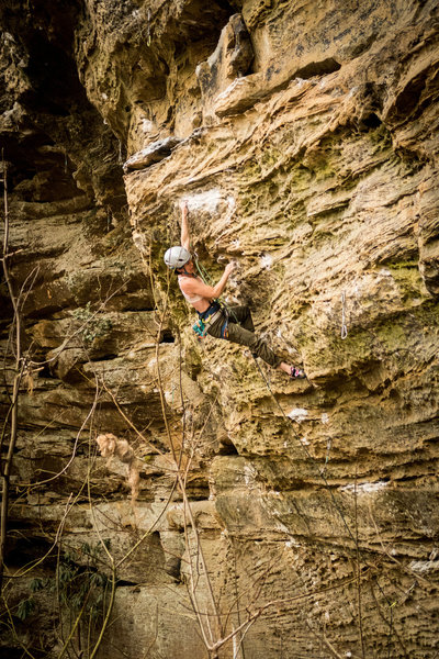In the middle of the crux at the third bolt. A few more moves to a big ledge and then a sit down rest before the juggy climbing to the top. April 2019.