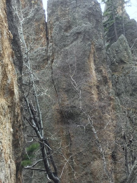Route follows splitter/ hand  crack to the ground