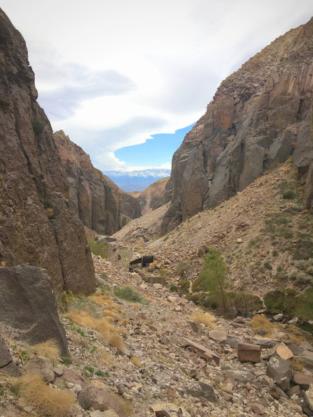 A great view from the Inner Gorge down the canyon with the White Mountains behind.