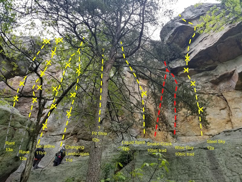 Broad view of middle part of Sun Wall from Rant to Steel Sky featuring large tree in your face. Topo lines do not indicate to climb tree.