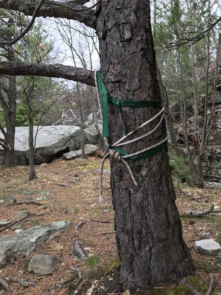 Slings with a ring for rappelling. Set up your own anchor to top rope here.