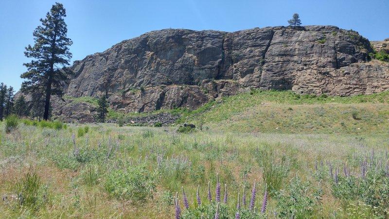 South Canyon, May 2016