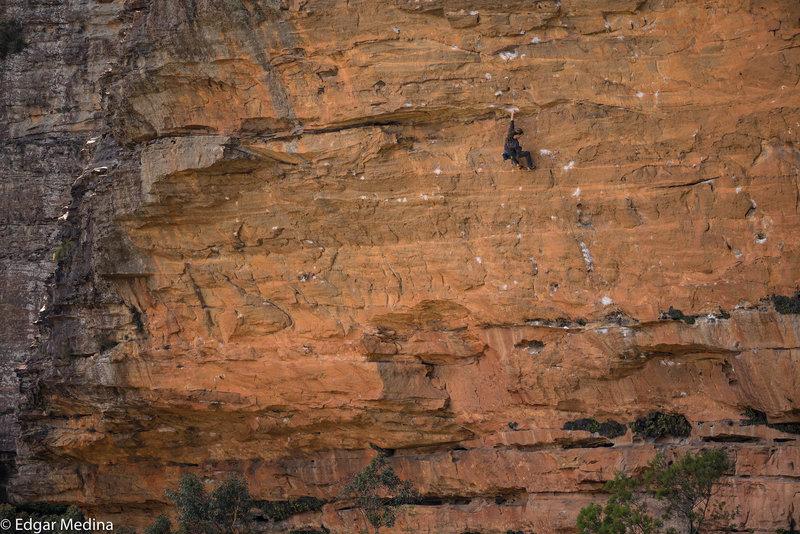 Brad Wright climbing Super Dooper Goo (29/8a) at Diamond Falls, Blue Mountains. the360guide.com
