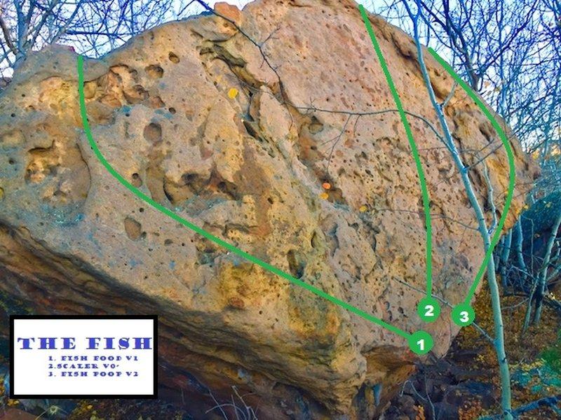 The Fish Boulder<br> 1. Fish Poop V1<br> 2. Scaler V0-<br> 3. Fish Poop V2