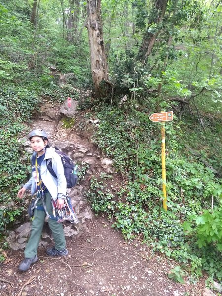 Where trail 58 turns away from the rack-fall barrier and heads up a steep dirt trail (almost there!!!)