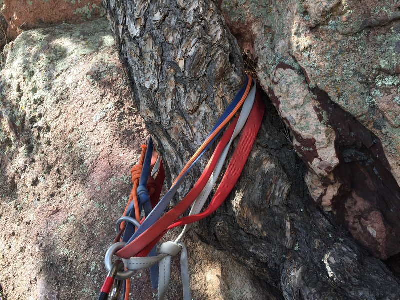 If you're following the guidebook rap line, each of the 3 trees is marked with slings & rings. They're hard to see from above, but the the next station will always be somewhere about 10-15' to your right. So keep a lookout. Also definitely tie your ends.