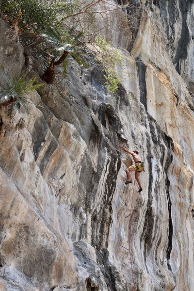 Through the crux, a bit sporty from here to the next bolt