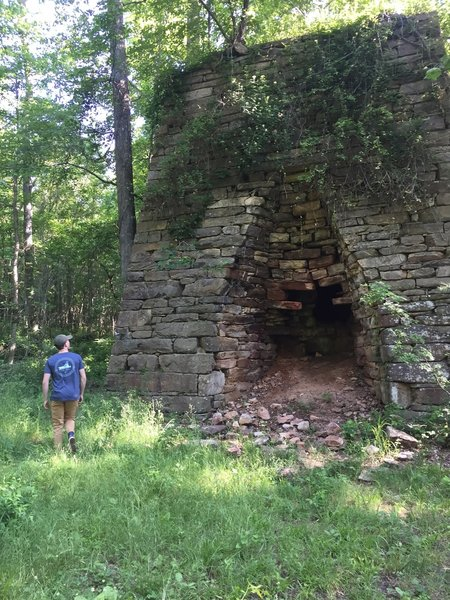 Old brick structure in Pine Long WMA. Could probably set some climbs on it.