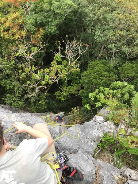 Jared Climbs his way up true hero
