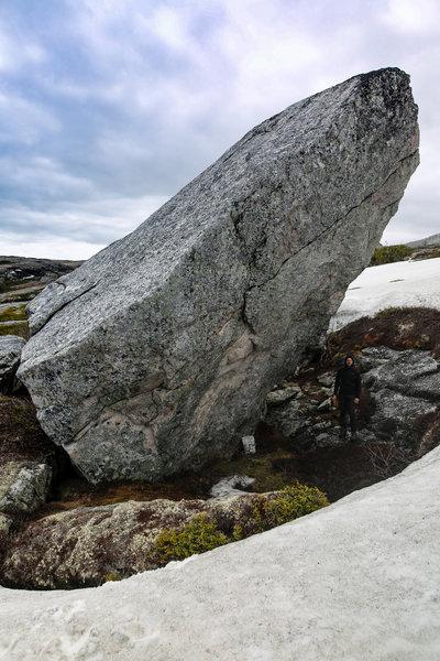 Tiny Dancer Boulder