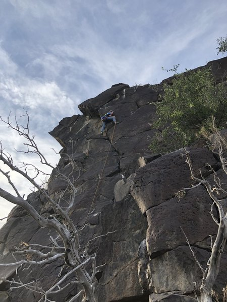 Lyra's first lead on Scour Power 5.8