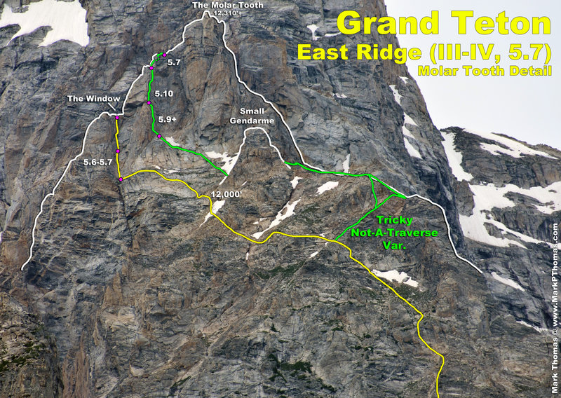 The East Ridge of the Grand Teton Molar Tooth area, with the standard variation shown in yellow. There is a bivy platform where the green line hits the far right edge of the ridge crest.