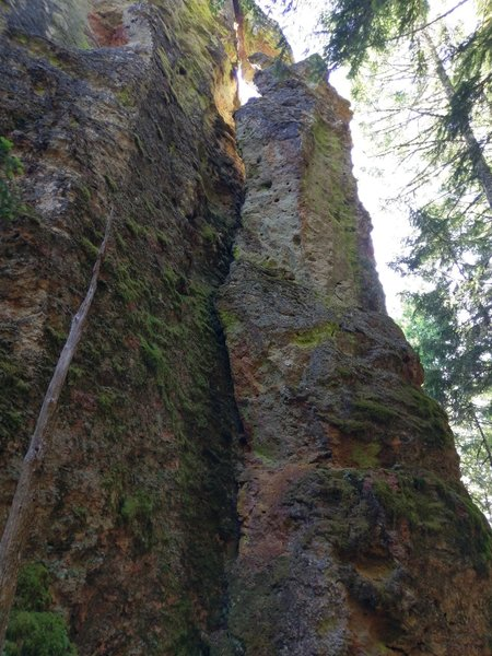 The dead tree points up the route.  Climb the face to anchors on top.