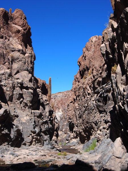 Hiking Atacama region