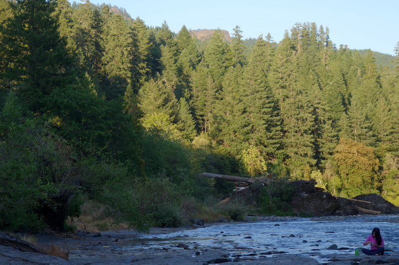 North Umpqua River, North and South Combs visible above treeline
