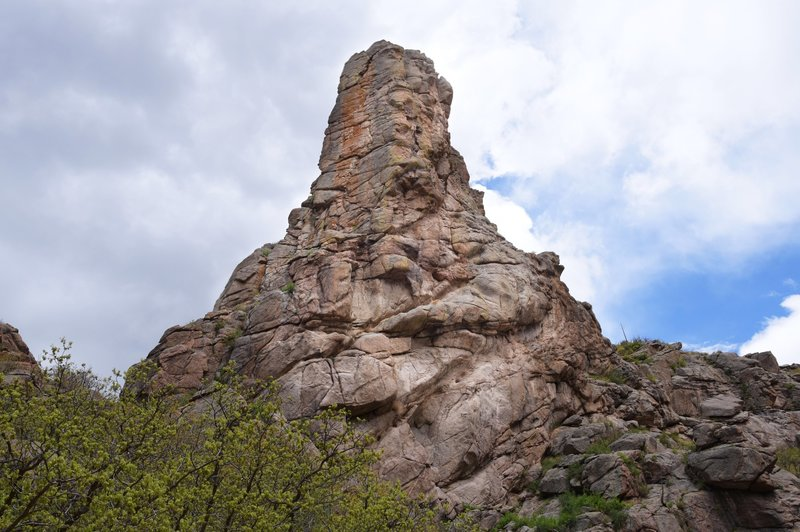 West face of the roost.