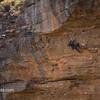 Brad Wright climbing Super Dooper Goo (29/8a) at Diamond Falls, Blue Mountains - Australia