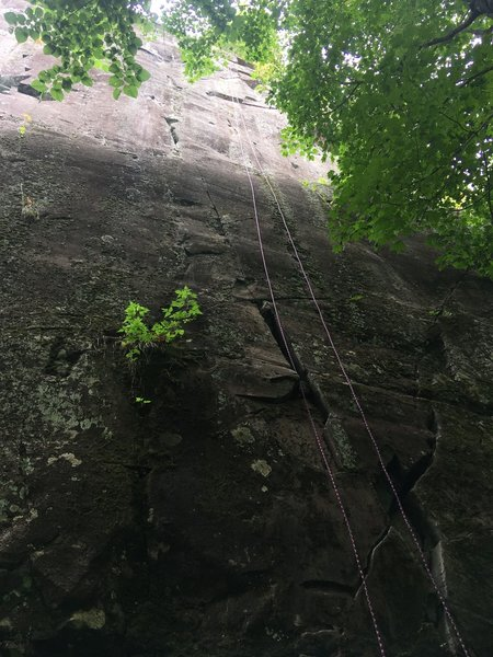 Rope hanging from the anchors to the bottom of the route. Where it goes from light to dark is the slopey ledge.