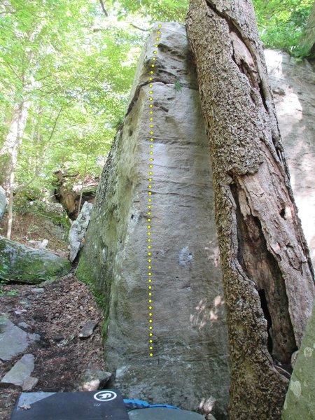 Tilted Tree Arete (V3)
