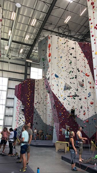 Back corner of the gym. Full lead wall on opposing side. Bouldering also not pictured.