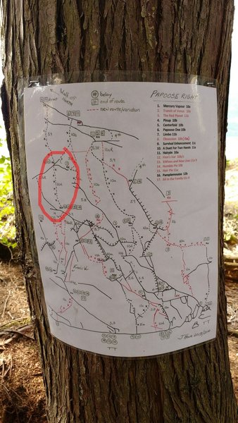 Topo with 10d/11a direct second to last pitch of Papoose One and Hairpin circled.