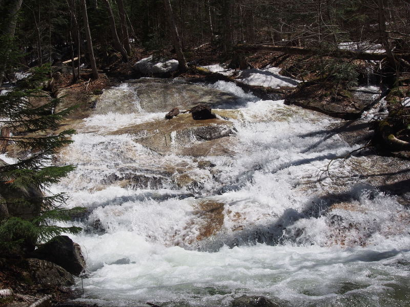 """'Stairs"""" Falls, aka """"Sawteeth Falls"""" from bushwhack on uphill-left-side of river, Falling Waters Trail"""