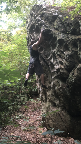 Anyone know this boulder? Went out of season and it was seriously overgrown and couldn't find the kiosk or anything to reference on the map to find anything. Had no clue where we were, just found some boulders and started climbing