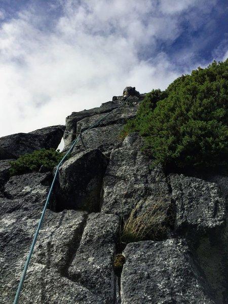 Start of Artic Rose, Half Moon Crag
