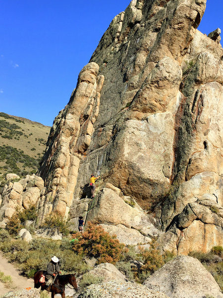 Locals don't care - FA at Snakeshead Rock