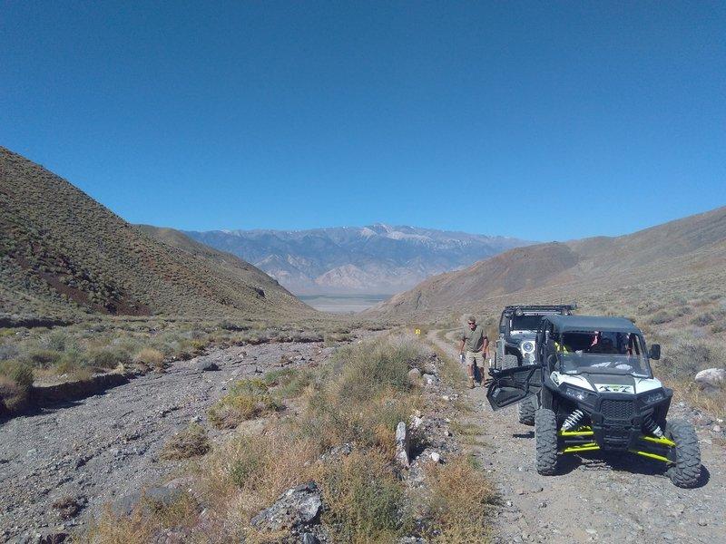 McAfee Canyon, Central Nevada