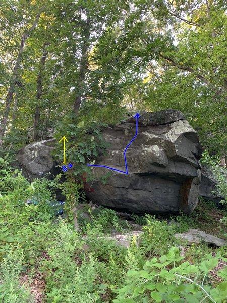 Blue - Trebuchet<br> Yellow - Catapult (line hidden behind tree)