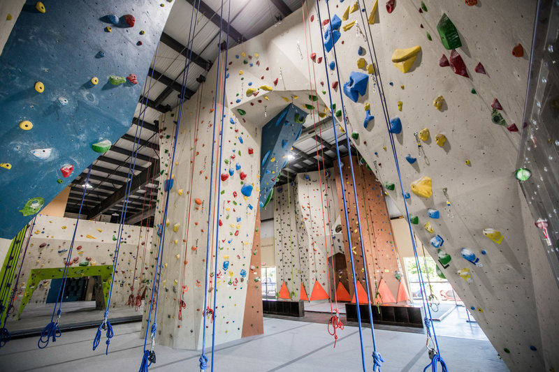 10,000 sqft of climbing surface, Auto Belays, Top Rope, Lead Arch, Top Out Boulder, Training Area and more.