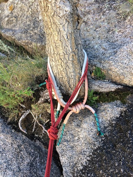 Tree belay/rap at the top of Pitch 1 (9/18/2019)