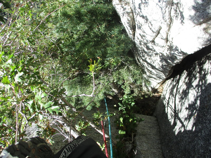 This was arguably the crux of P2 for me. Passing the pine tree to get into the chimney was a beast!