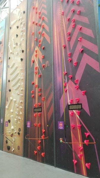 Speed climb on the beginner wall.