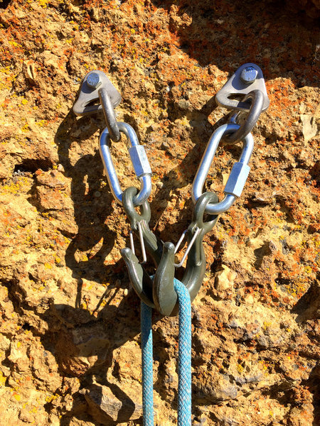 New hook anchors on Equineimity 10/8/19