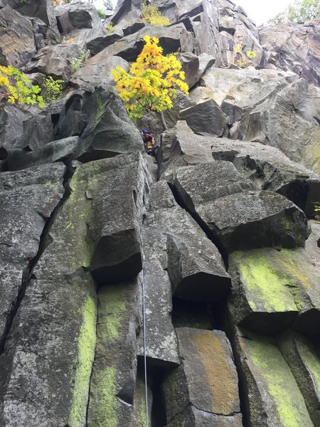 First pitch of Hanging Gardens. This 5.8 variation goes direct to bolted anchors just left of the tree.