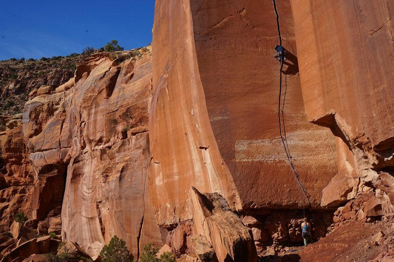 Drew Allison entering the route's upper crux where the route progressively widens through fists to offwidths.