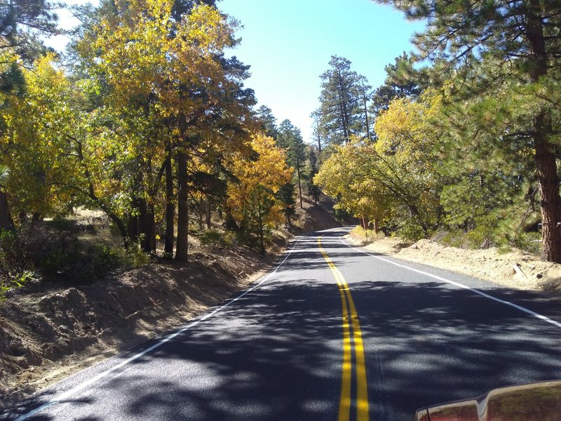 Jenks Lake Road, San Bernardino Mountains