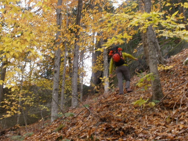 """The steep approach to Lumberjack from """"Little Slab"""""""